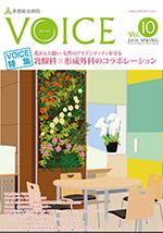 voice vol.10