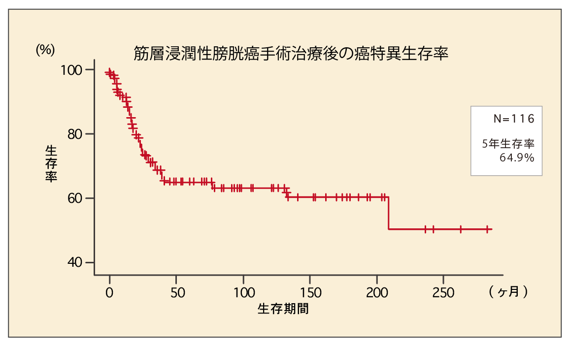筋層浸潤性膀胱癌手術治療後の癌特異生存率