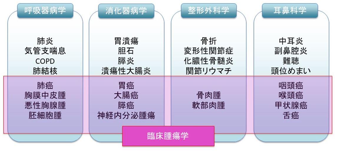 腫瘍内科の特徴